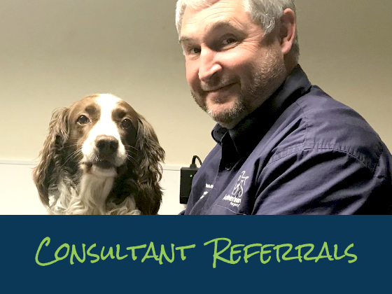Consultant Referrals